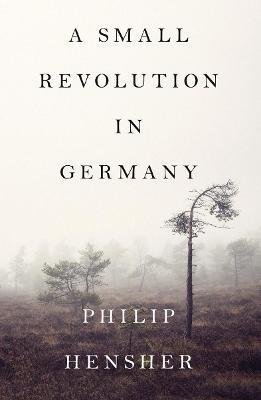 A Small Revolution in Germany