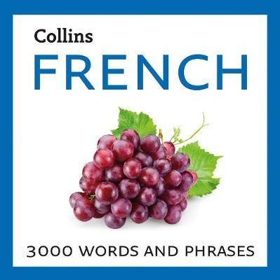 French : 3000 Words and Phrases
