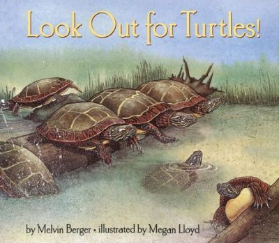 Look out for Turtles!