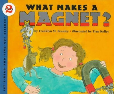What Takes A Magnet