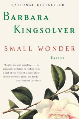 Small Wonder Cover Image