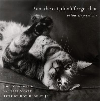 I Am the Cat, Don't Forget That