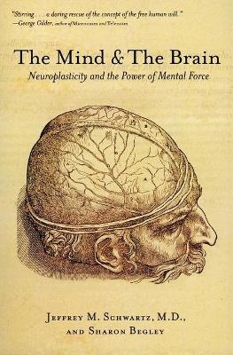 The Mind and the Brain : Neuroplasticity and the Power of Mental Force