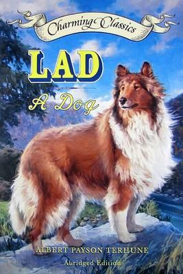 Lad Book and Charm