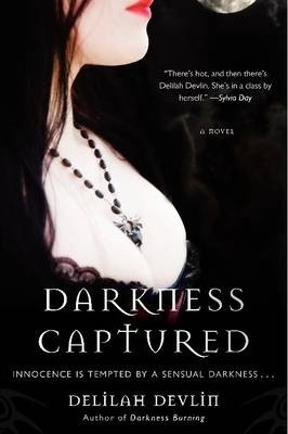 Darkness Captured A Novel