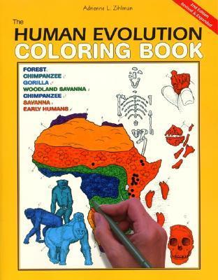 Human Evolution Coloring Book