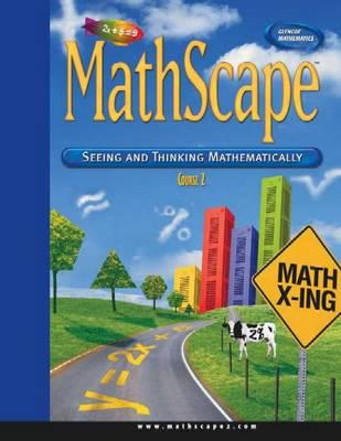 Mathscape: Seeing and Thinking