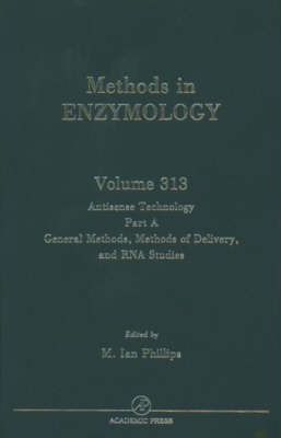 Antisense Technology, Part A, General Methods, Methods of Delivery, and RNA Studies: Volume 313