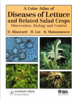 A Color Atlas of Diseases of Lettuce and Related Salad Crops