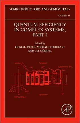 Quantum Efficiency in Complex Systems, Part I: Volume 83