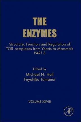 Structure, Function and Regulation of TOR complexes from Yeasts to Mammals: Volume 28