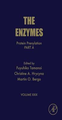 The Enzymes
