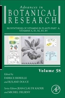 Biosynthesis of Vitamins in Plants