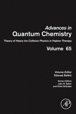 Theory of Heavy Ion Collision Physics in Hadron Therapy: Volume 65