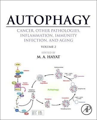 Autophagy: Cancer, Other Pathologies, Inflammation, Immunity, Infection, and Aging: Autophagy: Cancer, Other Pathologies, Inflammation, Immunity, Infection, and Aging Role in General Diseases Volume 2