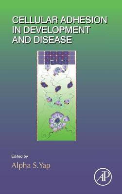 Cellular Adhesion in Development and Disease: Volume 112