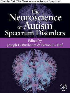 The Cerebellum in Autism Spectrum Disorders