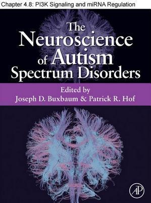 Pi3k Signaling and Mirna Regulation in Autism Spectrum Disorders