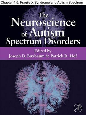 Fragile X Syndrome and Autism Spectrum Disorders