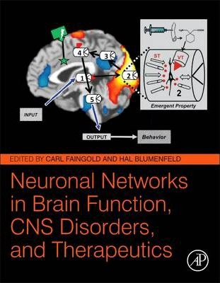 Neuronal Networks in Brain Function, CNS Disorders, and Therapeutics