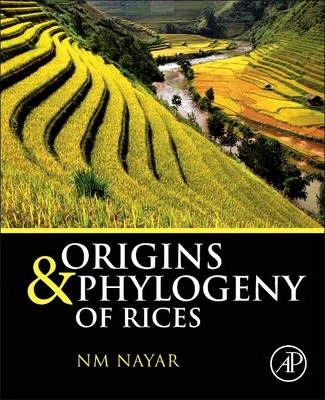 Origin and Phylogeny of Rices