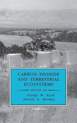 Carbon Dioxide and Terrestrial Ecosystems