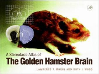 A Stereotaxic Atlas of the Golden Hamster Brain