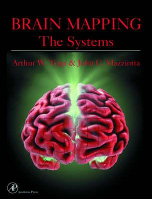 Brain Mapping: The Systems