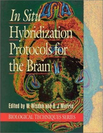 In Situ Hybridization for the Brain