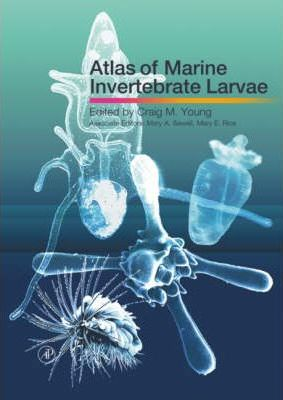 Atlas of Marine Invertebrate Larvae