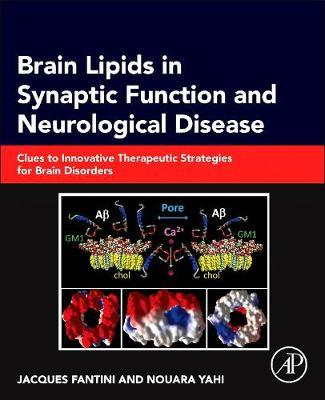 Brain Lipids in Synaptic Function and Neurological Disease