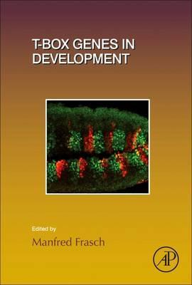 T-box Genes in Development and Disease: Volume 122