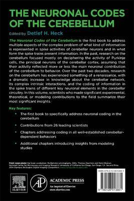 The Neuronal Codes of the Cerebellum