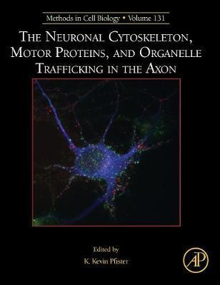 The Neuronal Cytoskeleton, Motor Proteins, and Organelle Trafficking in the Axon: Volume 131