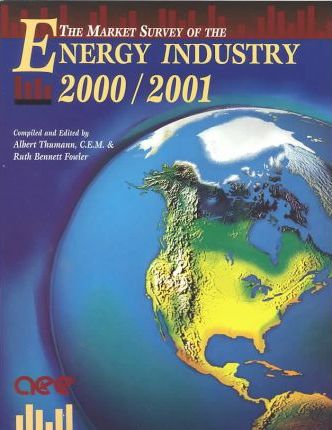 Market Survey of the Energy Industry 2000/2001