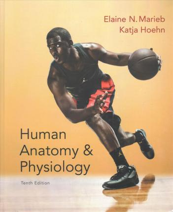 A Human Anatomy & Physiology; Modified Mastering A&p with Pearson ...
