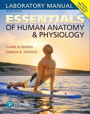 Essentials Of Human Anatomy Physiology Laboratory Manual