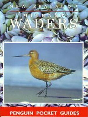 New Zealand's Migrant Waders