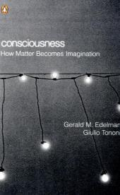 Consciousness: How Matter Becomes Imagination