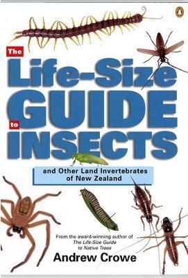 The Life-Size Guide to Insects,