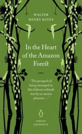 In the Heart of the Amazon Forest