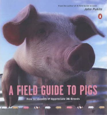 A Field Guide to Pigs