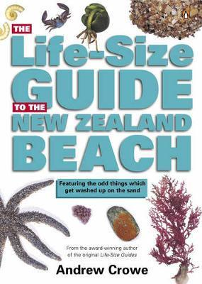 The Life-Size Guide to the New Zealand Beach