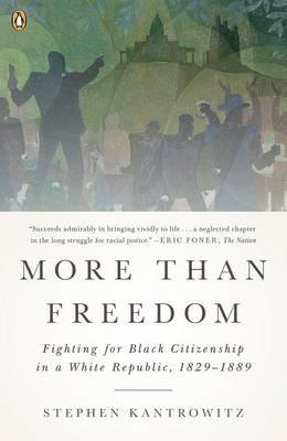 More Than Freedom : Fighting for Black Citizenship in a White Republic, 1829-1889