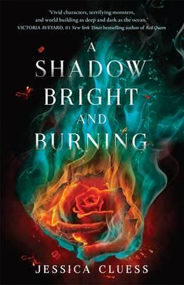 A Shadow Bright and Burning, A