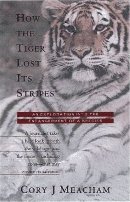 How the Tiger Lost Its Stripes