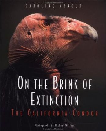 On the Brink of Extinction
