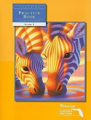 Trophies: Florida Edition, Changing Patterns Practice Book, Grade 3