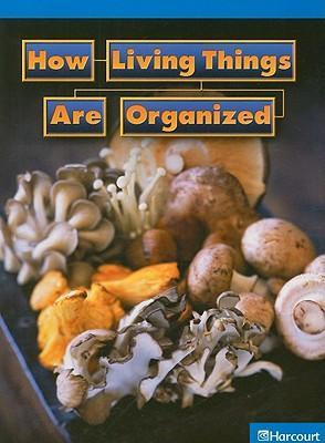 How Living Things Are Organized