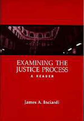 Examining the Justice Process